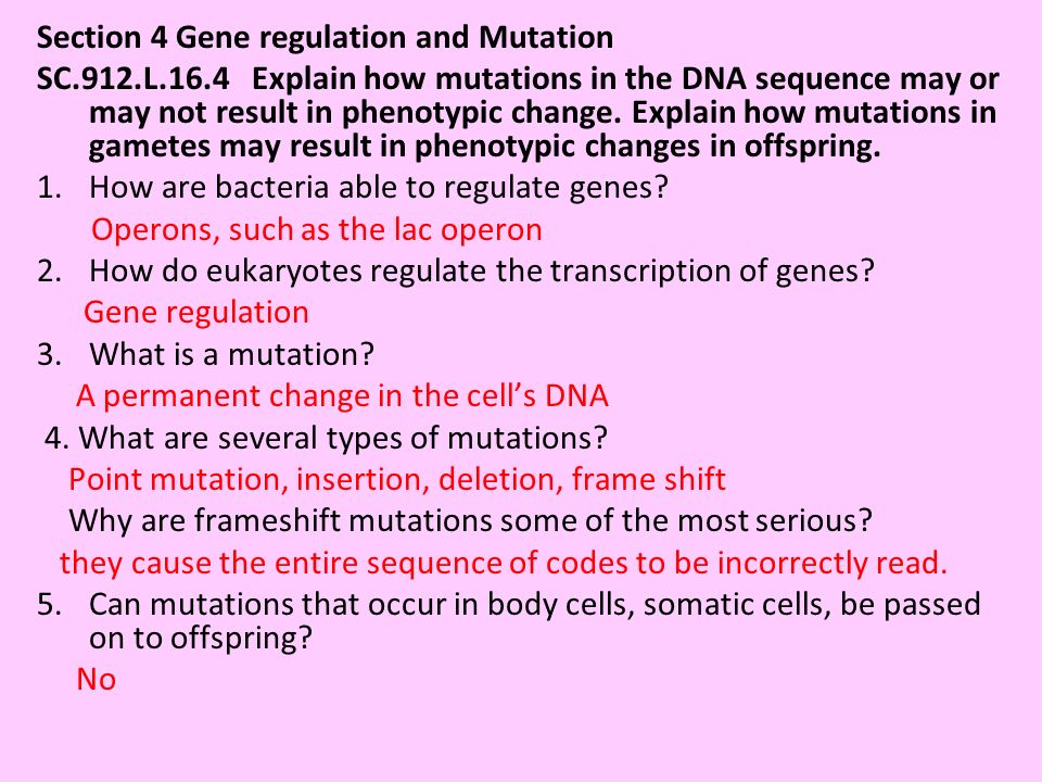 Section 4 Gene regulation and Mutation SC.912.L.16.4 Explain how mutations in the DNA sequence may or may not result in phenotypic change. Explain how