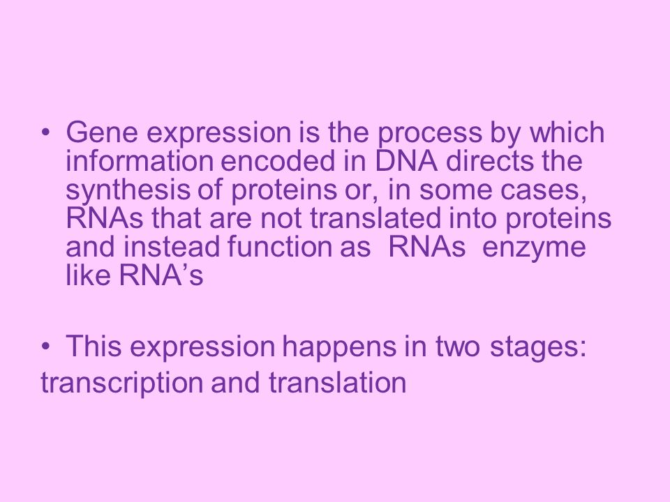 Gene expression is the process by which information encoded in DNA directs the synthesis of proteins or, in some cases, RNAs that are not translated i