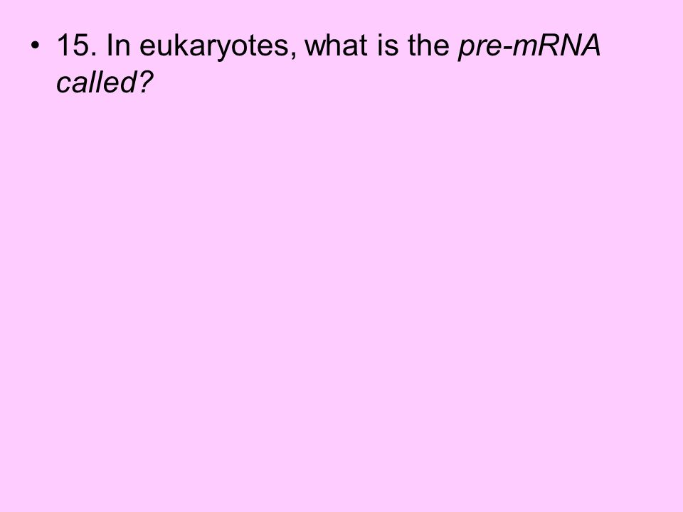 15. In eukaryotes, what is the pre-mRNA called?