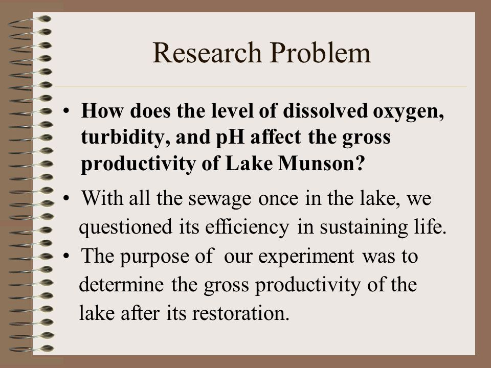 How does the level of dissolved oxygen, turbidity, and pH affect the gross productivity of Lake Munson? Research Problem With all the sewage once in t
