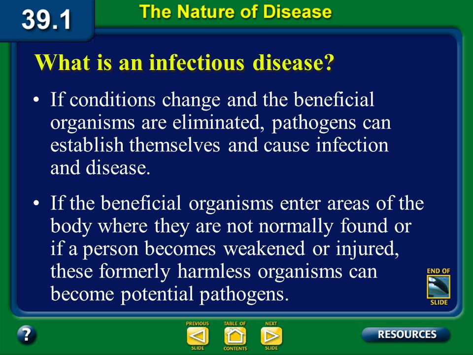 Section 39.1 Summary – pages 1023-1030 Not all microorganisms are pathogenic. In fact, the presence of some microorganisms in your body is beneficial.