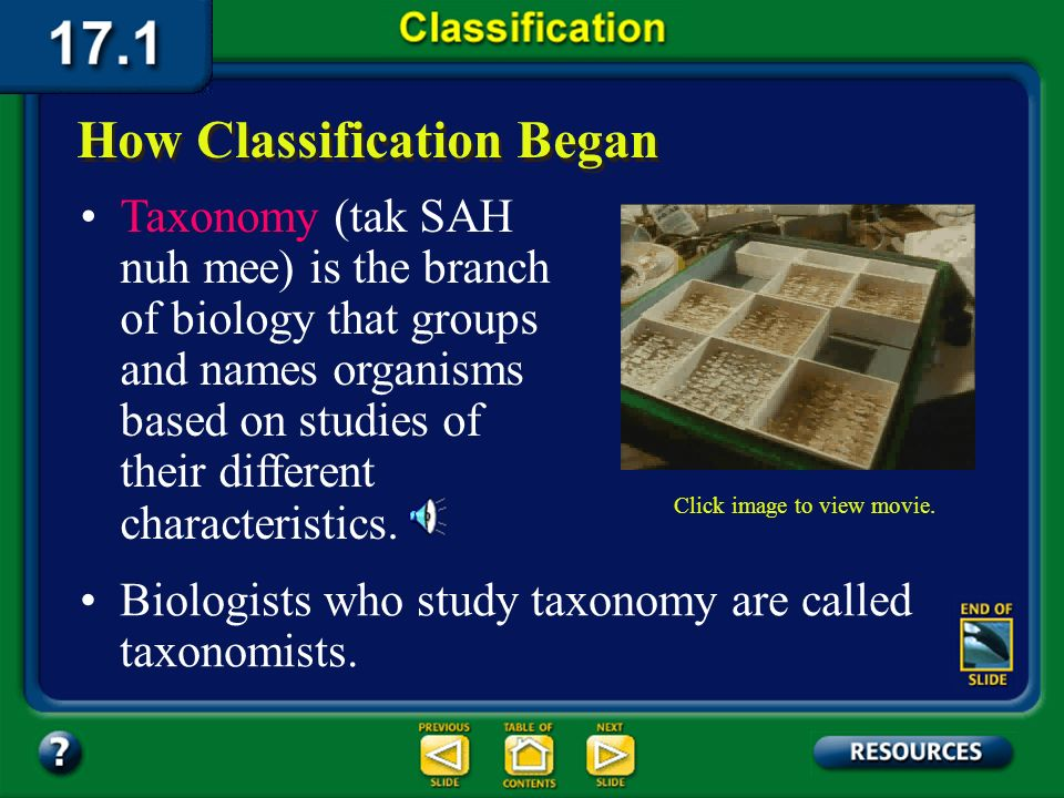 Section 17.1 Summary – pages 443-449 Biologists want to better understand organisms so they organize them. One tool that they use to do this is classi
