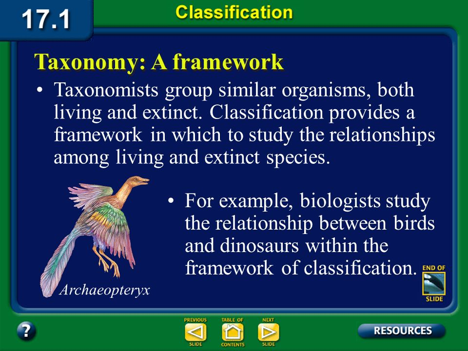 Section 17.1 Summary – pages 443-449 Grouping organisms on the basis of their evolutionary relationships makes it easier to understand biological dive