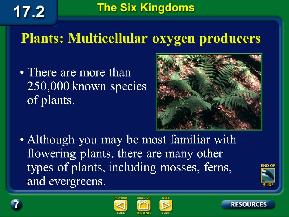 Section 17.2 Summary – pages 450-459 The oldest plant fossils are more than 400 million years old. However, some scientists propose that plants existe