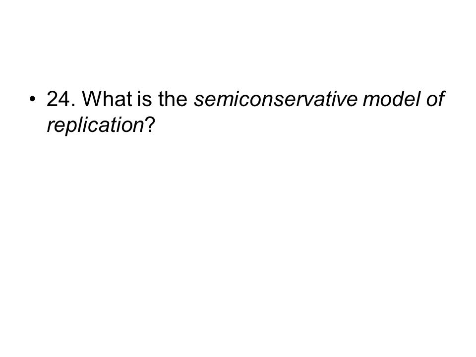 24. What is the semiconservative model of replication?