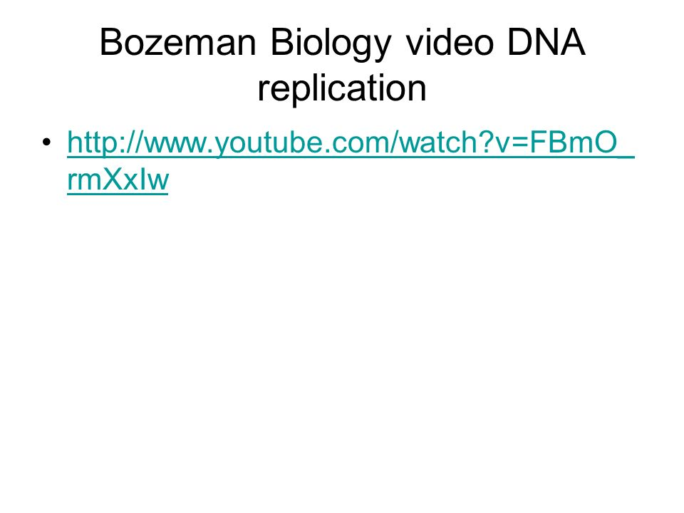 Bozeman Biology video DNA replication http://www.youtube.com/watch?v=FBmO_ rmXxIwhttp://www.youtube.com/watch?v=FBmO_ rmXxIw