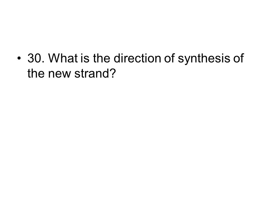 30. What is the direction of synthesis of the new strand?