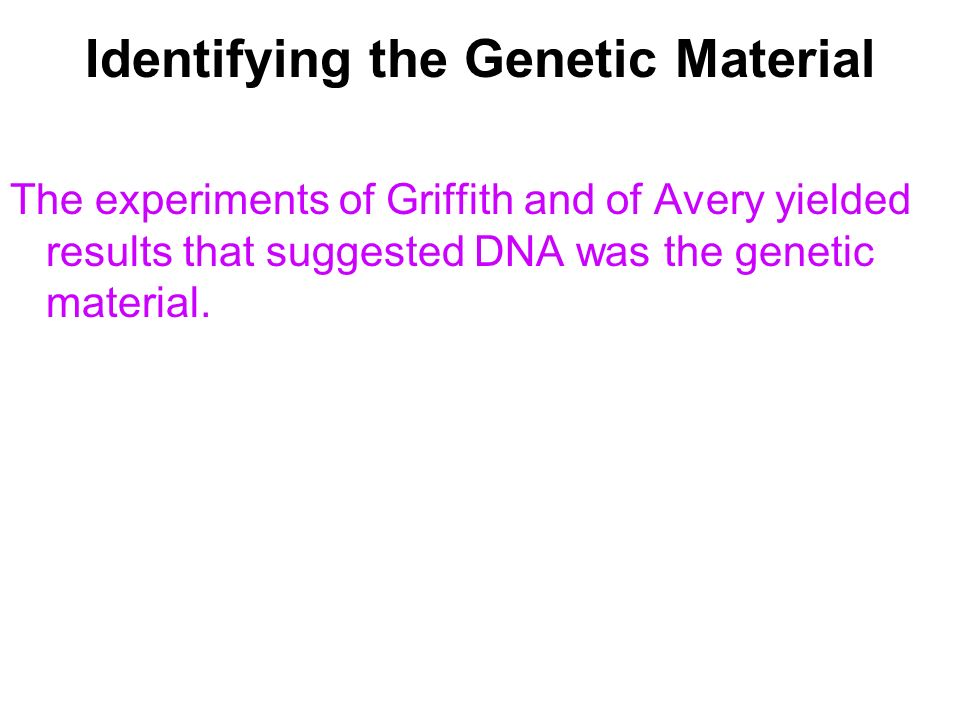 Identifying the Genetic Material The experiments of Griffith and of Avery yielded results that suggested DNA was the genetic material.