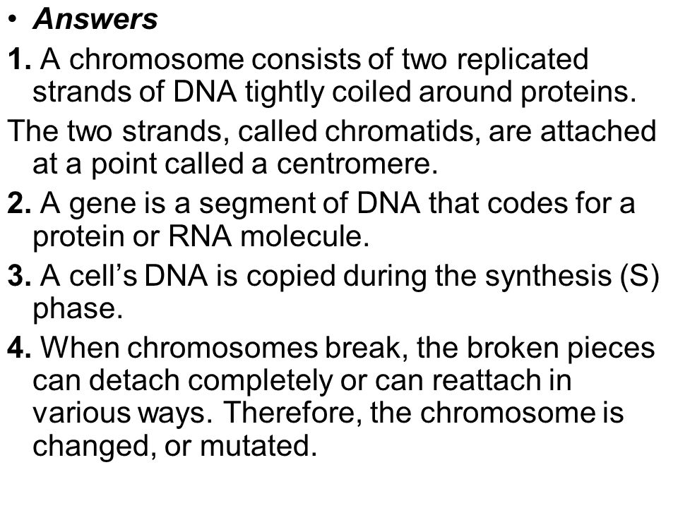 Answers 1. A chromosome consists of two replicated strands of DNA tightly coiled around proteins. The two strands, called chromatids, are attached at