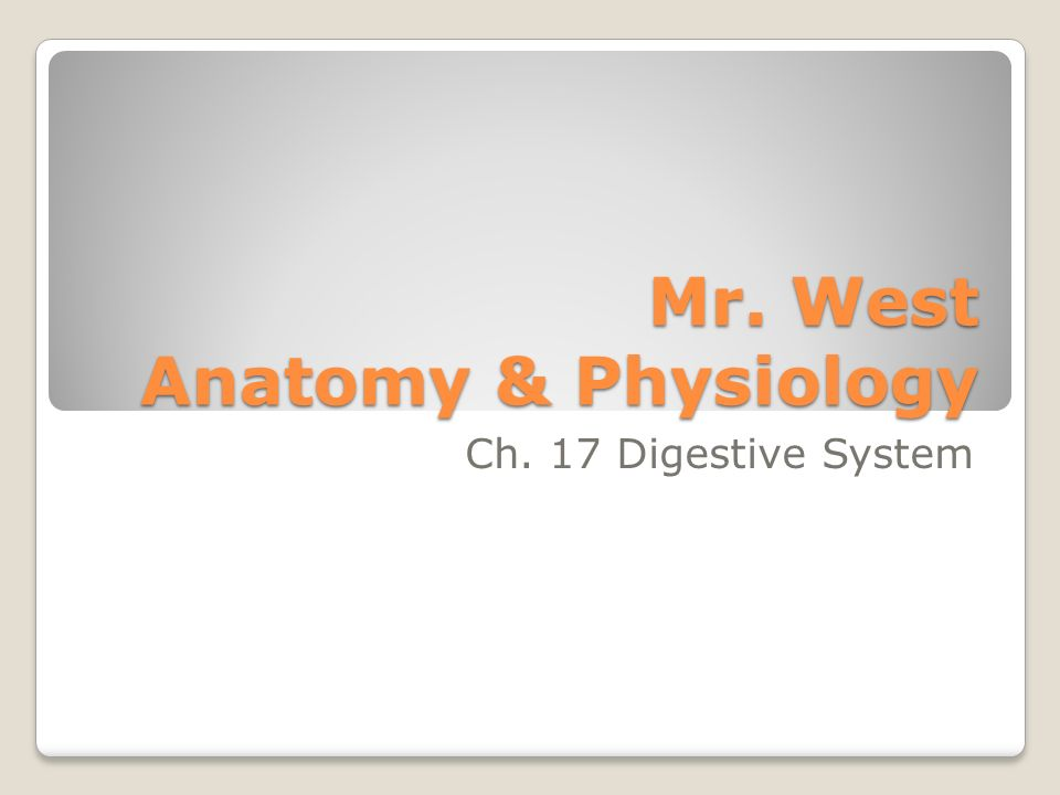 Mr. West Anatomy & Physiology Ch. 17 Digestive System