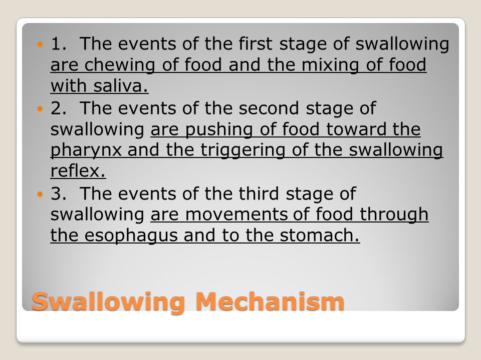 Swallowing Mechanism 1. The events of the first stage of swallowing are chewing of food and the mixing of food with saliva. 2. The events of the secon