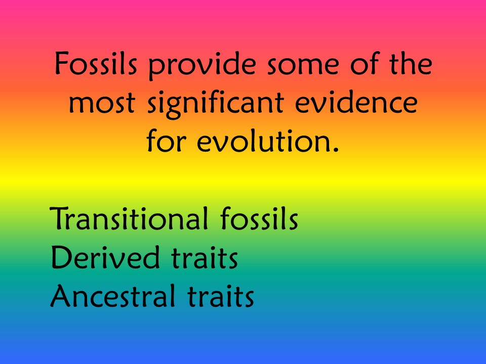 Fossils provide some of the most significant evidence for evolution. Transitional fossils Derived traits Ancestral traits