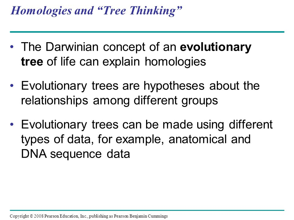 Homologies and Tree Thinking The Darwinian concept of an evolutionary tree of life can explain homologies Evolutionary trees are hypotheses about the
