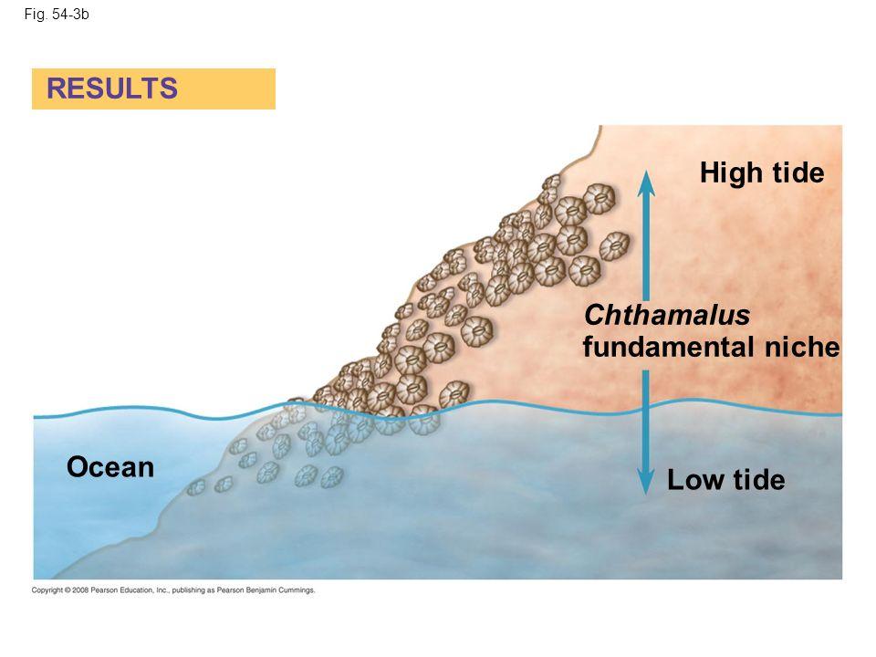 Fig. 54-3b RESULTS High tide Chthamalus fundamental niche Low tide Ocean