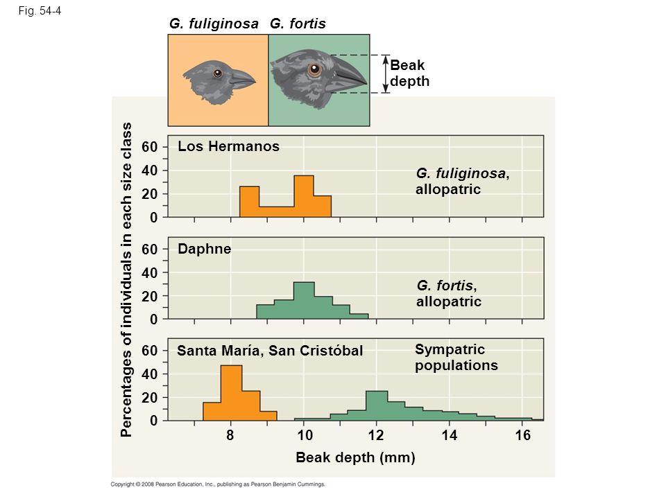 Fig. 54-4 Los Hermanos G. fuliginosaG. fortis Beak depth Daphne G. fuliginosa, allopatric G. fortis, allopatric Sympatric populations Santa María, San