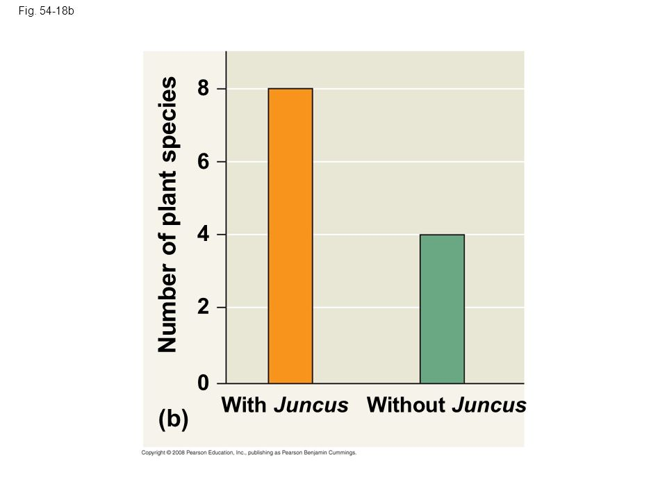 Fig. 54-18b With JuncusWithout Juncus 0 2 4 6 8 Number of plant species (b)
