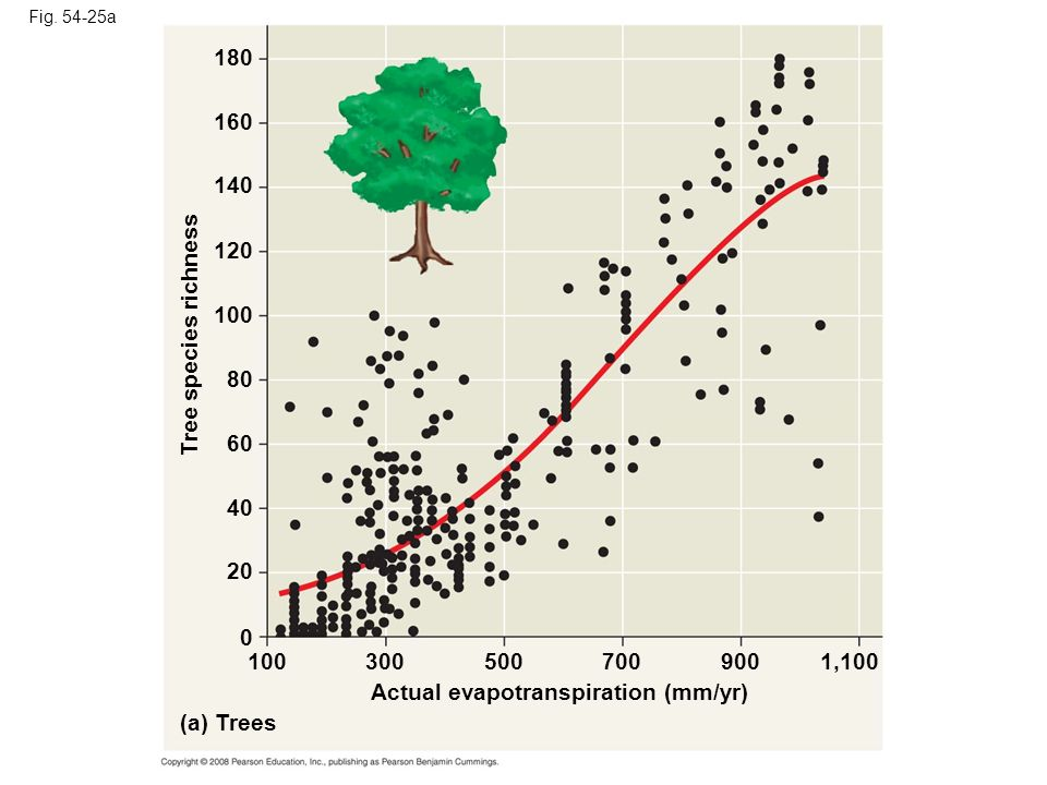 Fig. 54-25a (a) Trees Actual evapotranspiration (mm/yr) Tree species richness 160 120 100 140 180 80 60 40 20 0 1003005009001,100700