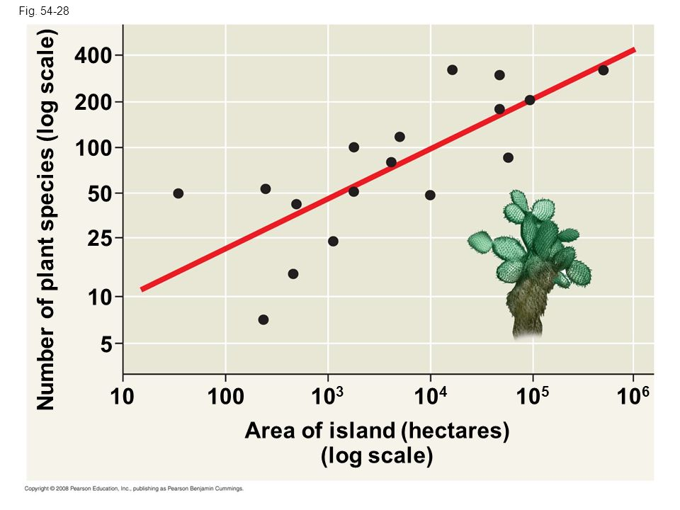 Fig. 54-28 Area of island (hectares) (log scale) Number of plant species (log scale) 1010010 3 10 4 10 5 10 6 10 25 50 100 200 400 5
