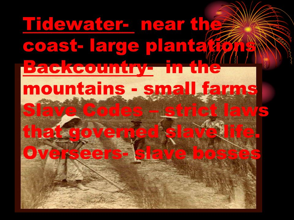 Tidewater- near the coast- large plantations Backcountry- in the mountains - small farms Slave Codes – strict laws that governed slave life. Overseers
