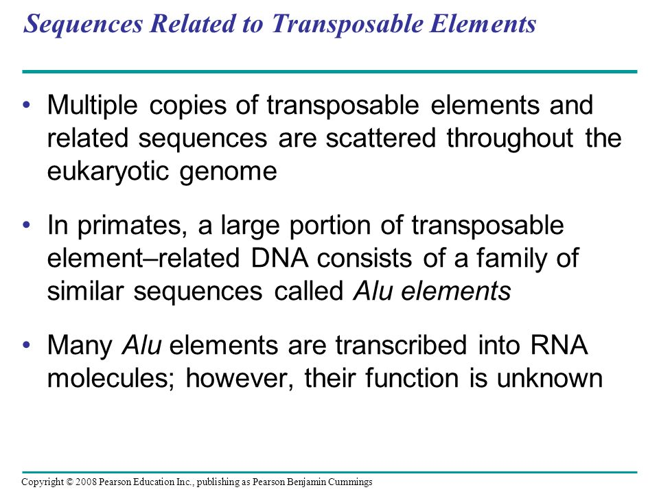 Copyright © 2008 Pearson Education Inc., publishing as Pearson Benjamin Cummings Sequences Related to Transposable Elements Multiple copies of transpo