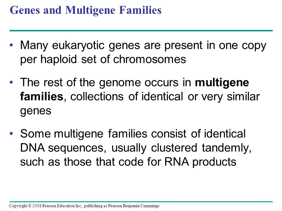 Copyright © 2008 Pearson Education Inc., publishing as Pearson Benjamin Cummings Genes and Multigene Families Many eukaryotic genes are present in one