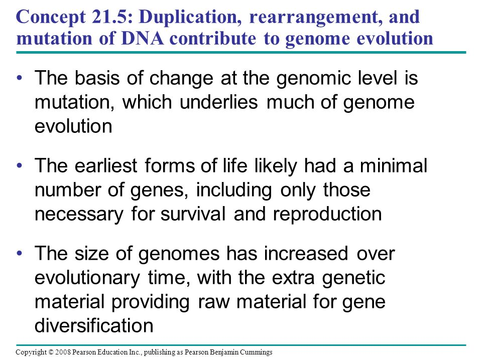 Copyright © 2008 Pearson Education Inc., publishing as Pearson Benjamin Cummings Concept 21.5: Duplication, rearrangement, and mutation of DNA contrib