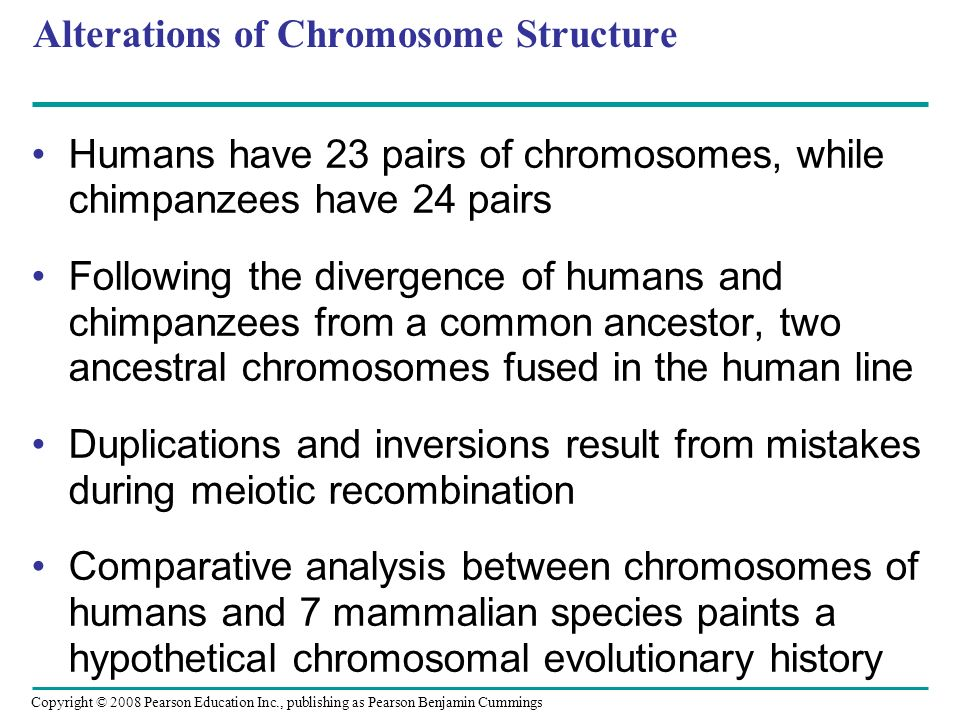 Copyright © 2008 Pearson Education Inc., publishing as Pearson Benjamin Cummings Alterations of Chromosome Structure Humans have 23 pairs of chromosom