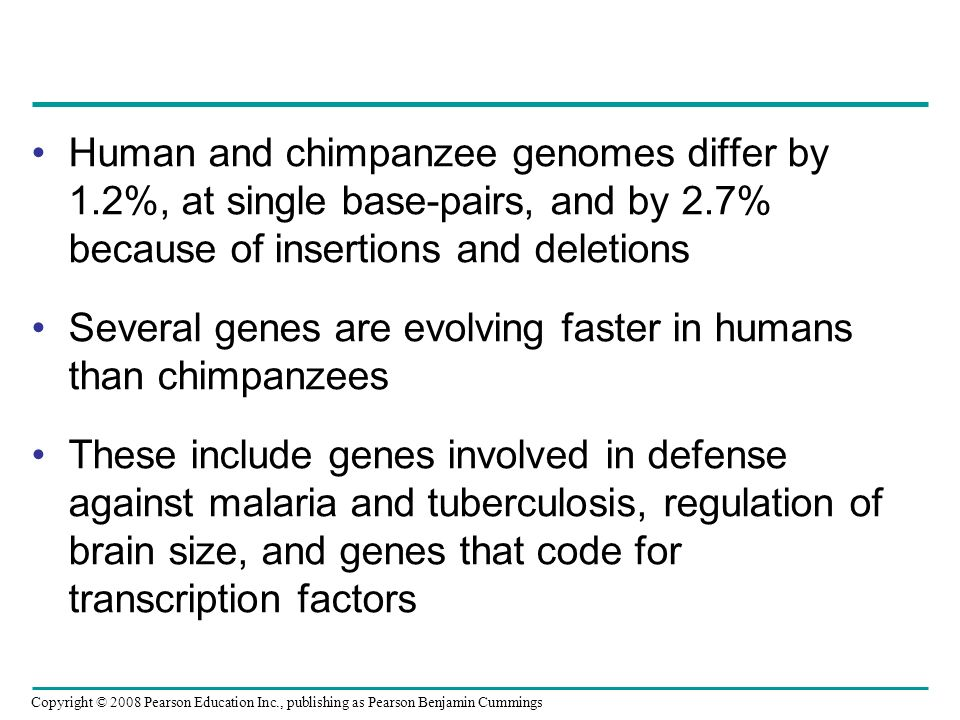 Copyright © 2008 Pearson Education Inc., publishing as Pearson Benjamin Cummings Human and chimpanzee genomes differ by 1.2%, at single base-pairs, an