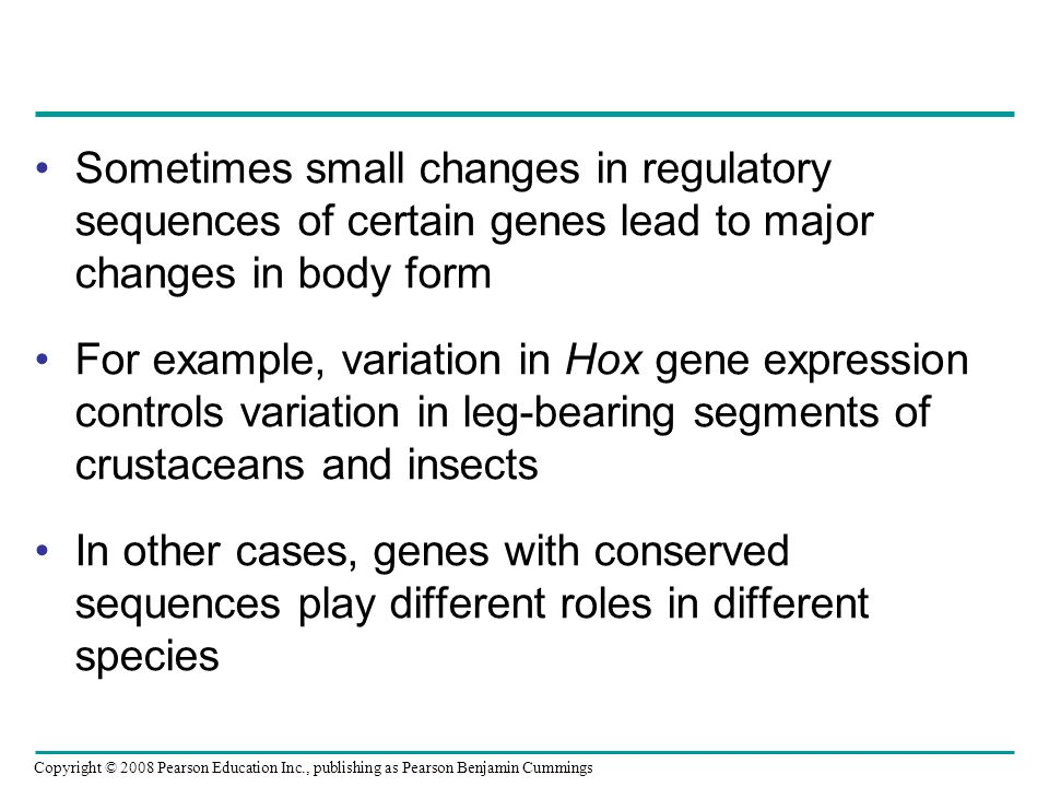 Copyright © 2008 Pearson Education Inc., publishing as Pearson Benjamin Cummings Sometimes small changes in regulatory sequences of certain genes lead