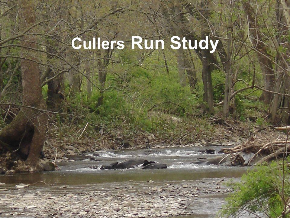 Cullers Run Study