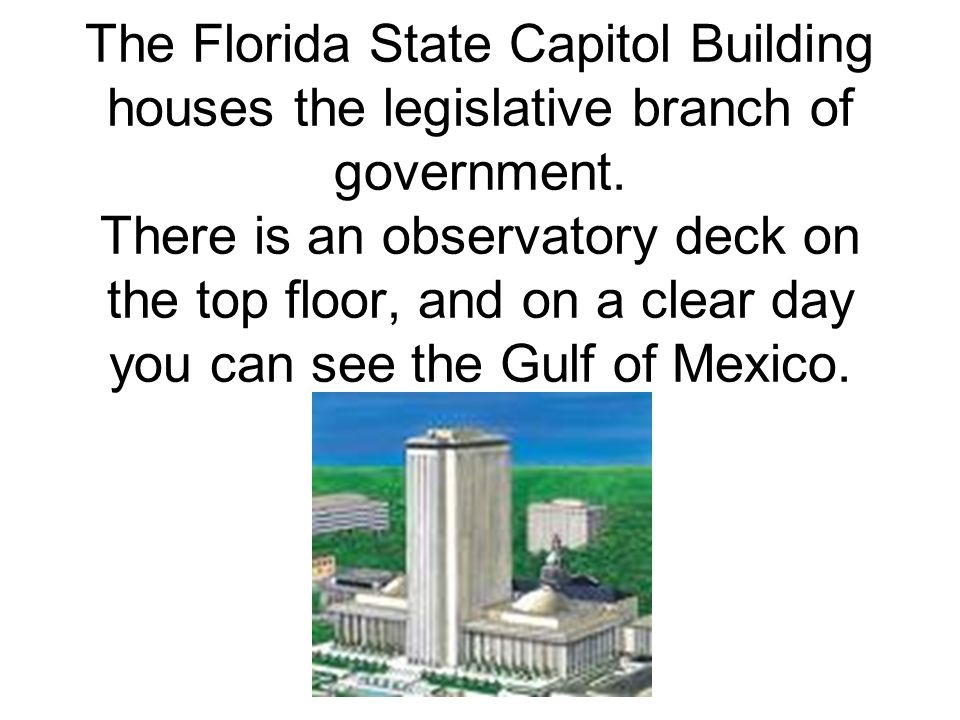 This is the state of Florida.It is a peninsula, meaning it is surrounded on three sides by water.