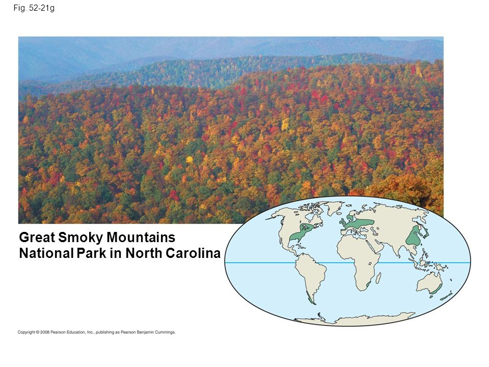 Fig. 52-21g Great Smoky Mountains National Park in North Carolina