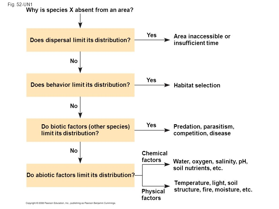 Fig. 52-UN1 Why is species X absent from an area? Does dispersal limit its distribution? Area inaccessible or insufficient time Yes No Does behavior l