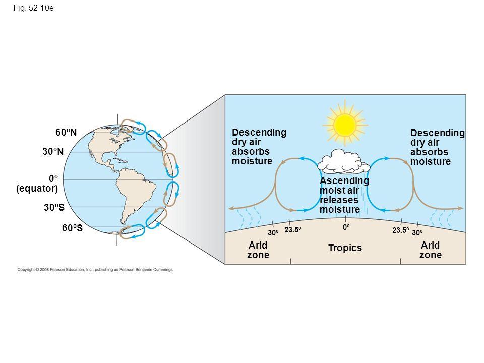 Fig. 52-10e Descending dry air absorbs moisture Descending dry air absorbs moisture Ascending moist air releases moisture Arid zone Arid zone Tropics