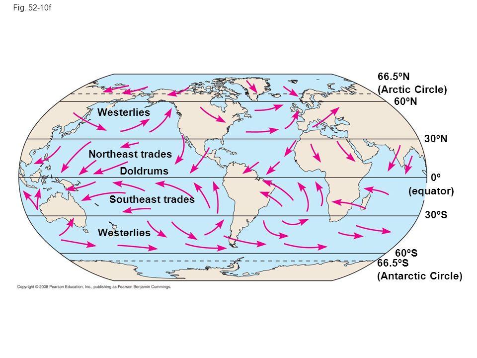 Fig. 52-10f 0º (equator) 30ºS 60ºS 66.5ºS (Antarctic Circle) 30ºN 66.5ºN (Arctic Circle) 60ºN Westerlies Northeast trades Doldrums Southeast trades We