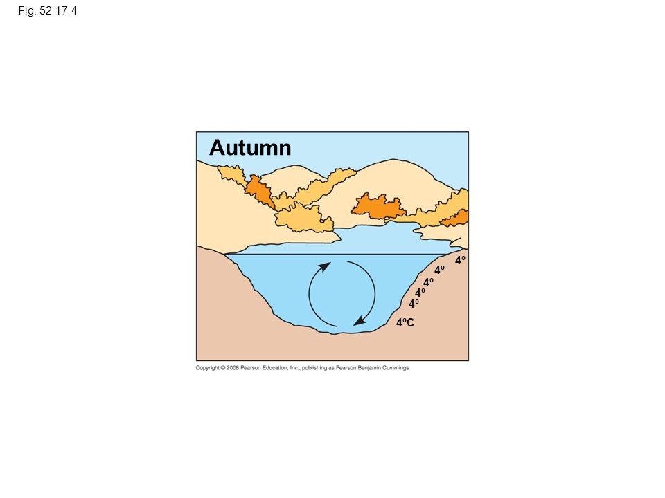 Fig. 52-17-4 Autumn 4º 4ºC 4º