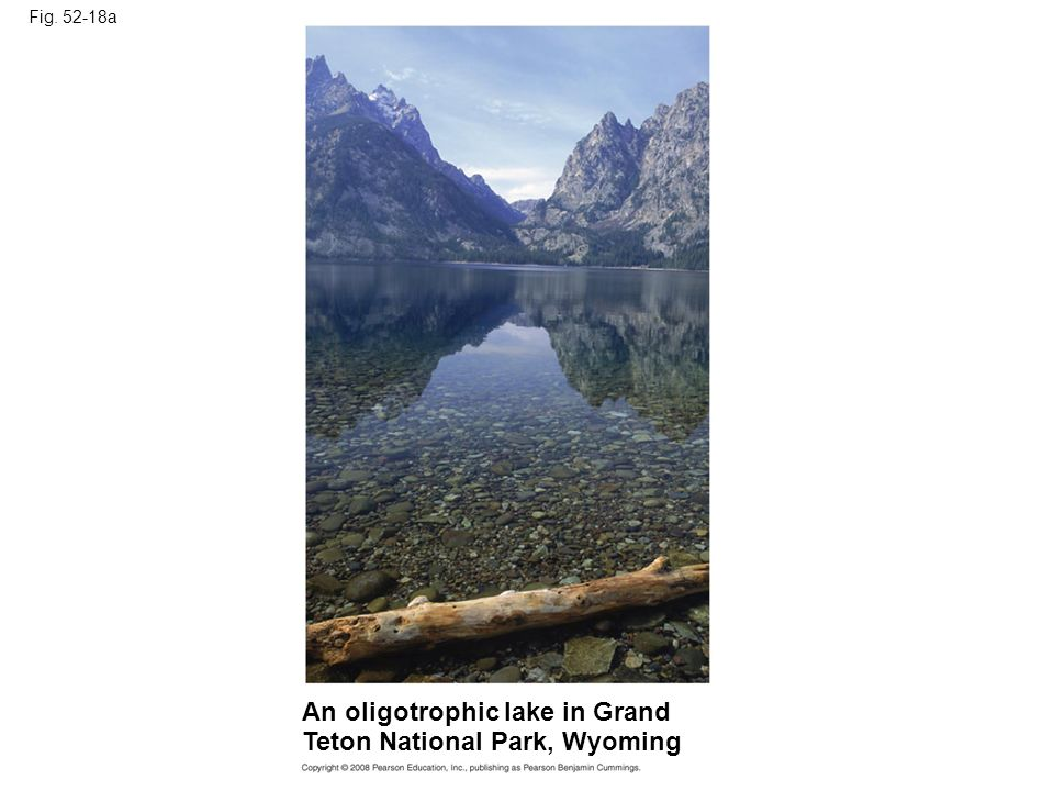 Fig. 52-18a An oligotrophic lake in Grand Teton National Park, Wyoming