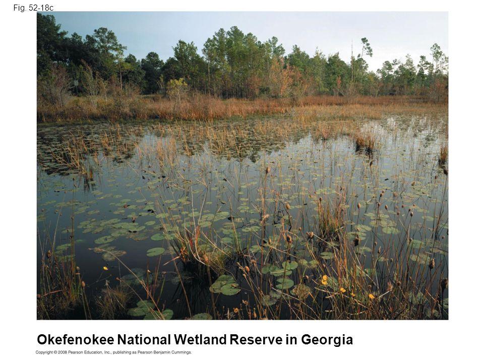 Fig. 52-18c Okefenokee National Wetland Reserve in Georgia