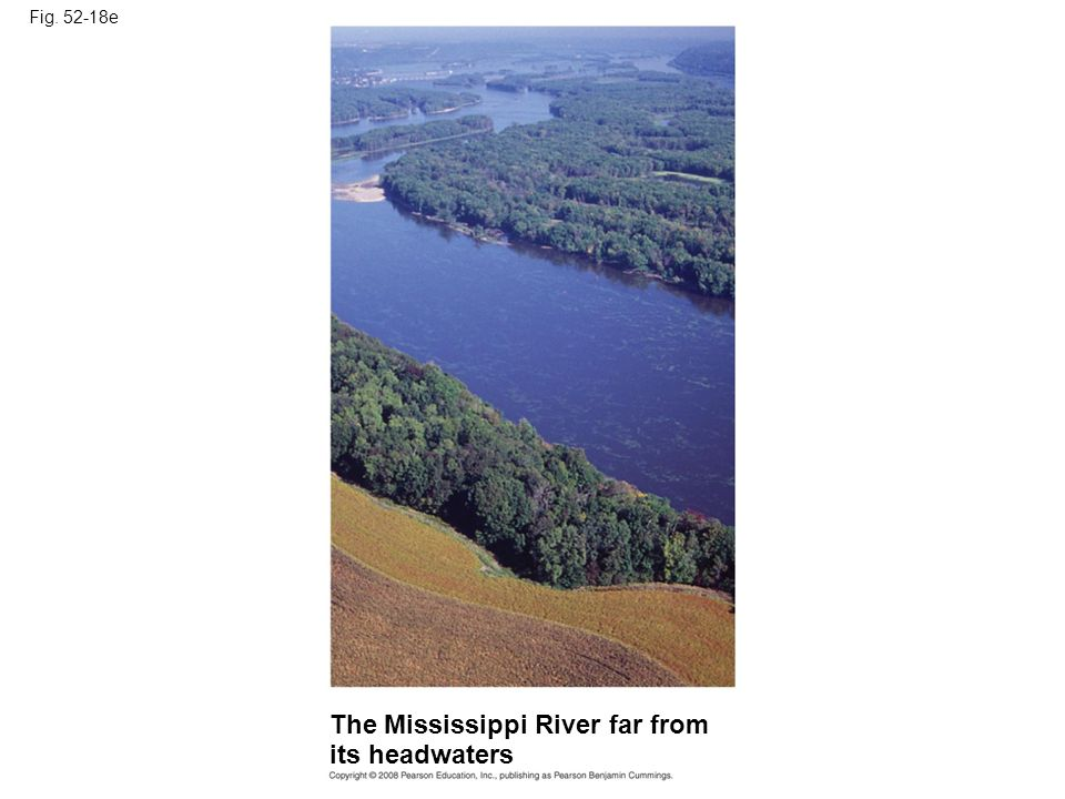Fig. 52-18e The Mississippi River far from its headwaters