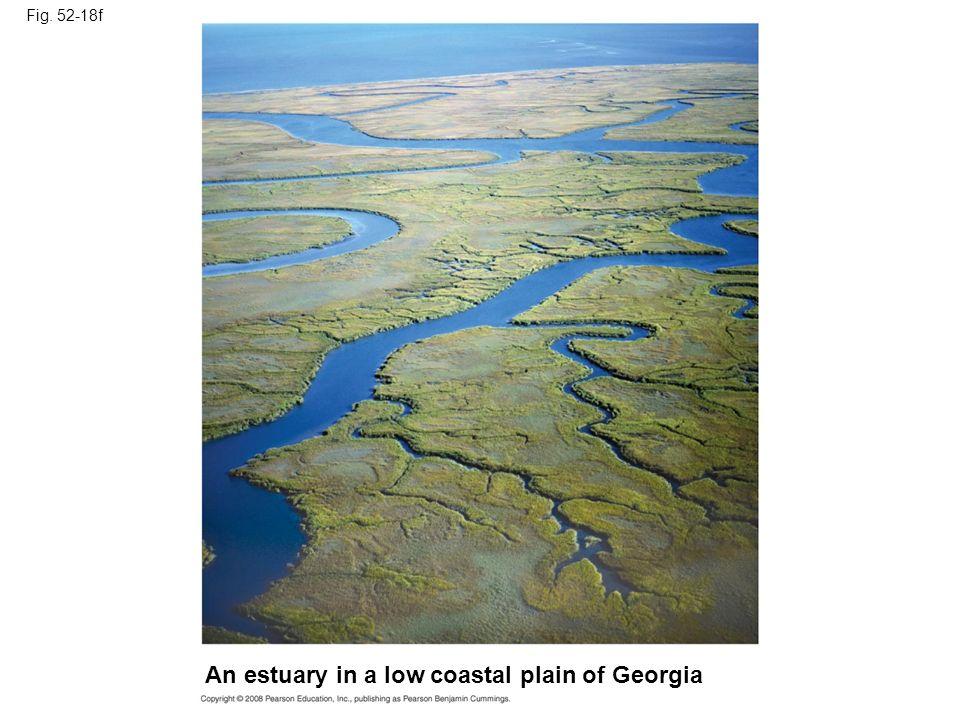 Fig. 52-18f An estuary in a low coastal plain of Georgia