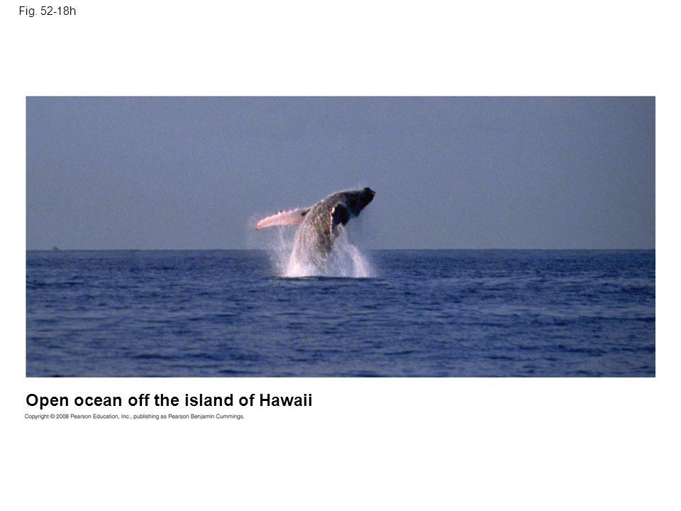 Fig. 52-18h Open ocean off the island of Hawaii