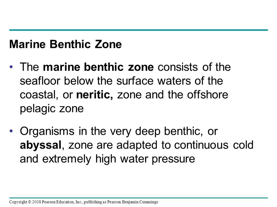 Copyright © 2008 Pearson Education, Inc., publishing as Pearson Benjamin Cummings Marine Benthic Zone The marine benthic zone consists of the seafloor