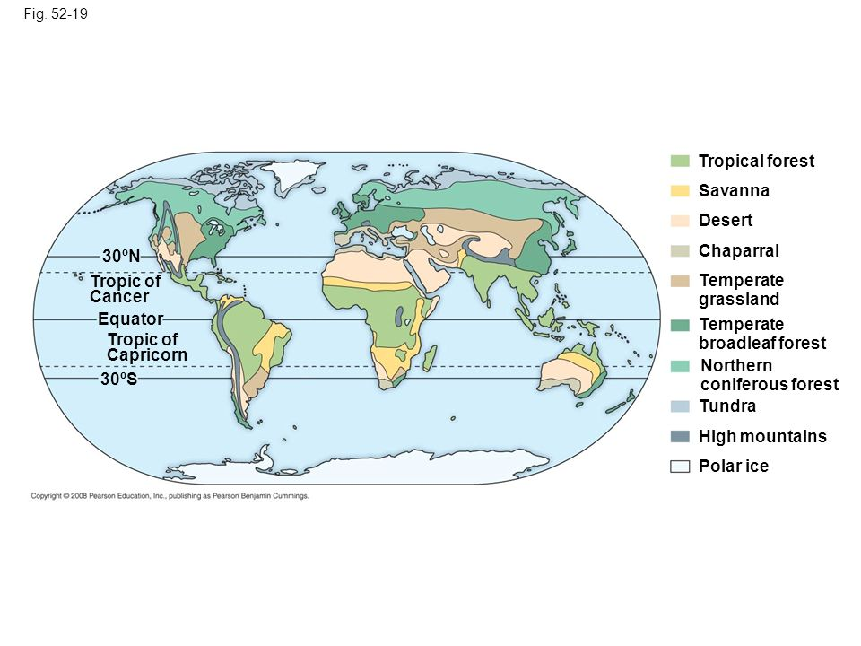 Fig. 52-19 Tropical forest Savanna Desert Chaparral Temperate grassland Temperate broadleaf forest Northern coniferous forest Tundra High mountains Po