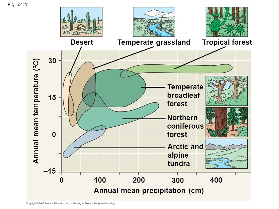 Fig. 52-20 Tropical forest Temperate grassland Desert Temperate broadleaf forest Northern coniferous forest Arctic and alpine tundra Annual mean tempe