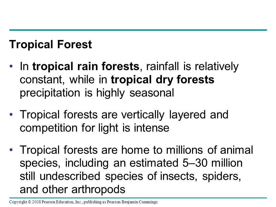 Copyright © 2008 Pearson Education, Inc., publishing as Pearson Benjamin Cummings Tropical Forest In tropical rain forests, rainfall is relatively con