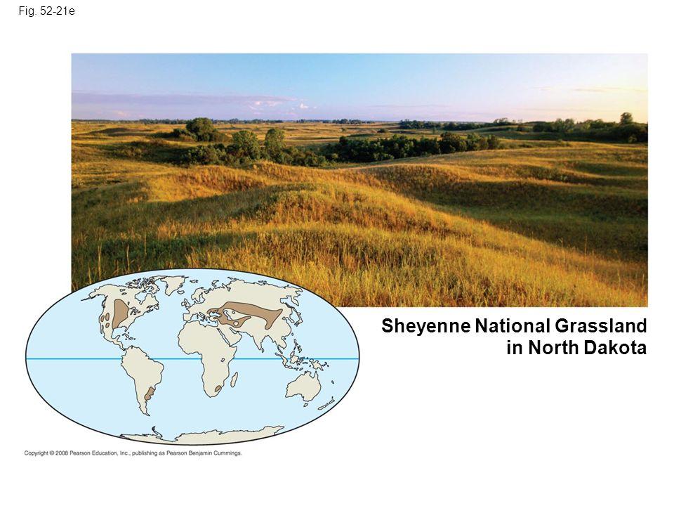 Fig. 52-21e Sheyenne National Grassland in North Dakota