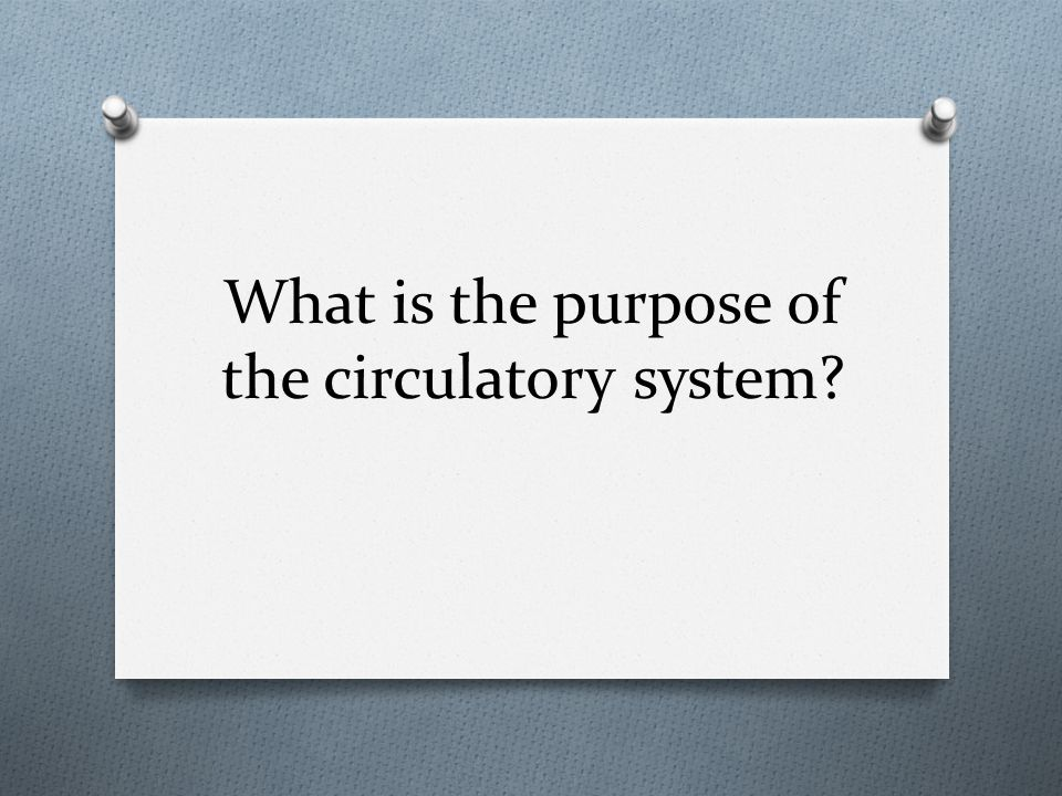 What is the purpose of the circulatory system?