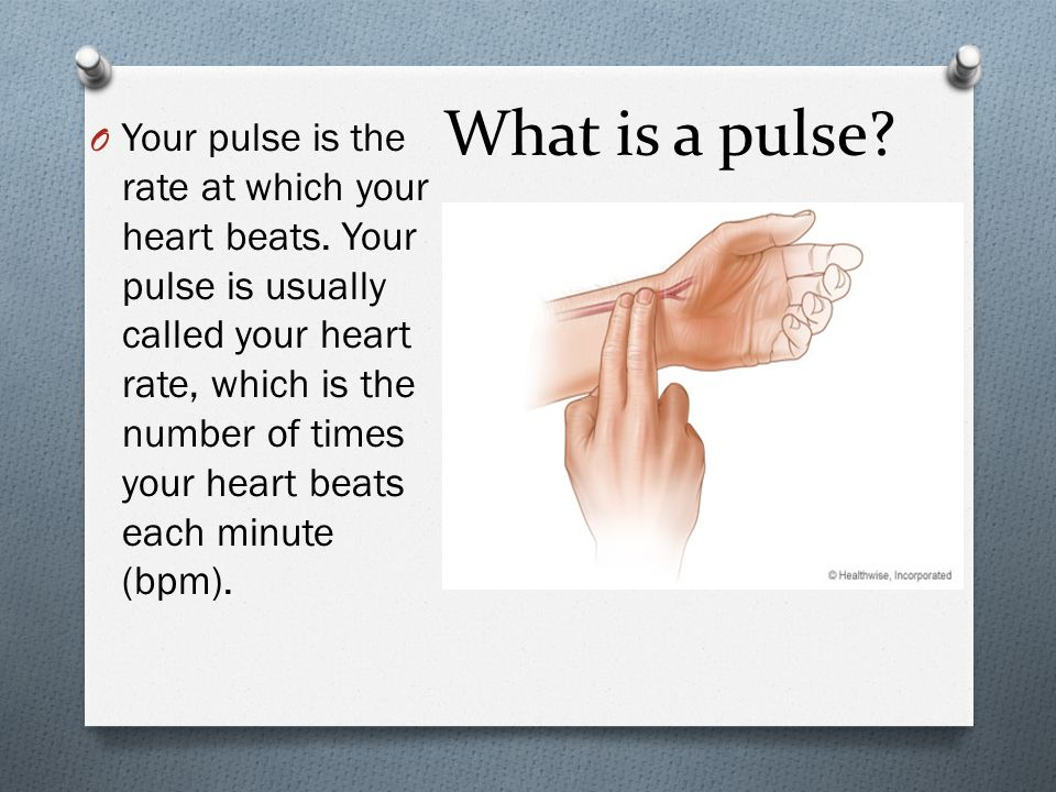 What is a pulse? O Your pulse is the rate at which your heart beats. Your pulse is usually called your heart rate, which is the number of times your h