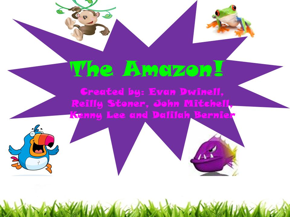 The Amazon! Created by: Evan Dwinell, Reilly Stoner, John Mitchell, Kenny Lee and Dalilah Bernier