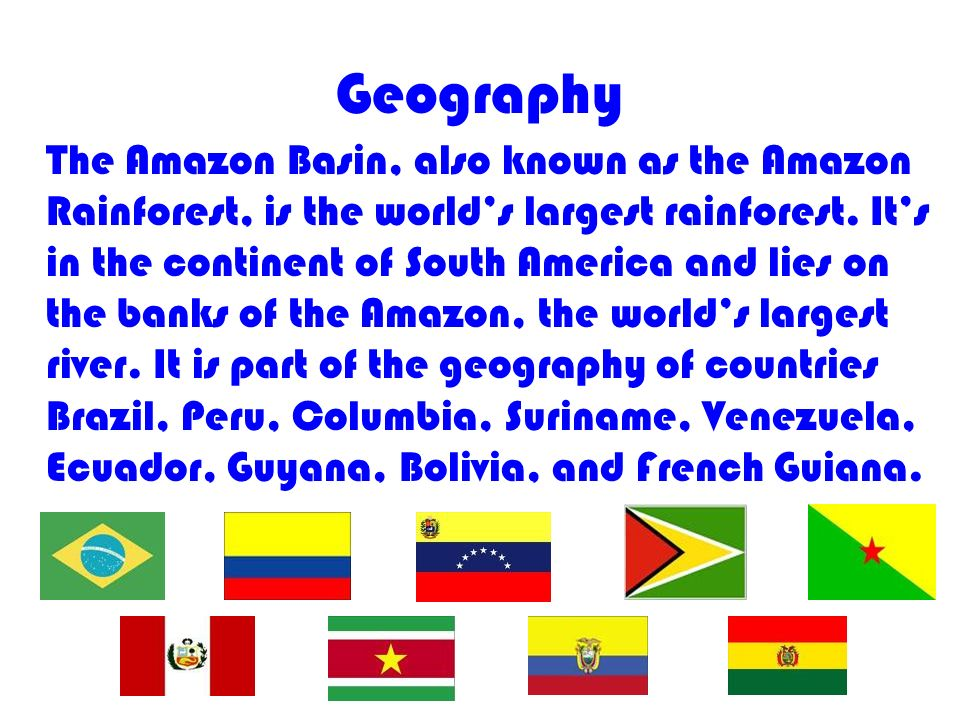 Geography The Amazon Basin, also known as the Amazon Rainforest, is the worlds largest rainforest.